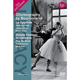 Koreografi af Bournonville [DVD] USA importerer