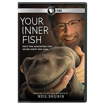 Your Inner Fish [DVD] USA import