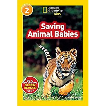 Rettende Tierbabys (National Geographic Leser Serie)