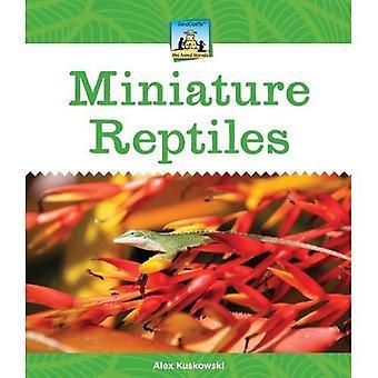 Miniature Reptiles (Sandcastle: Mini Animal Marvels)