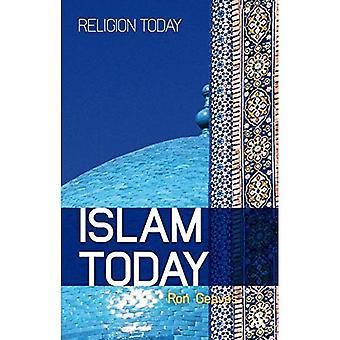 Islam vandaag: Een inleiding