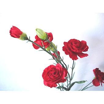 Artificial Silk Carnation Flowers Spray