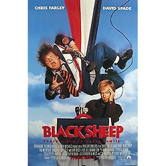 Black Sheep (Single Sided Regular) Original Cinema Poster (Single Sided Regular) Original Cinema Poster