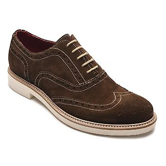 Alexander Men's Jargo Suede Leather Brogue Oxfords Shoes Dark Brown
