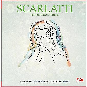 Scarlatti - SE Florindoe Fedele [CD] USA import