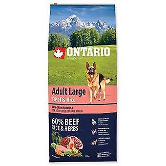 Ontario Adult Large Breed Beef and Rice (Hunde , Hundefutter , Trockenfutter)