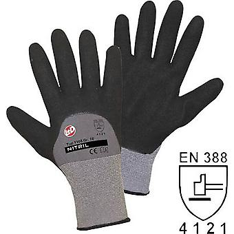 worky 1168 Size (gloves): 8, M