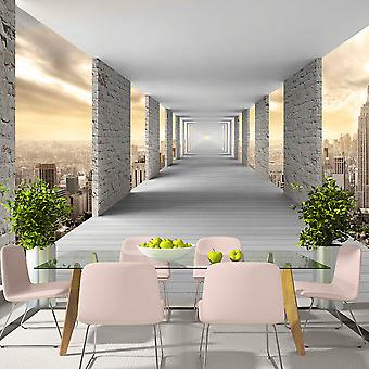 Tapet - Skyward korridor