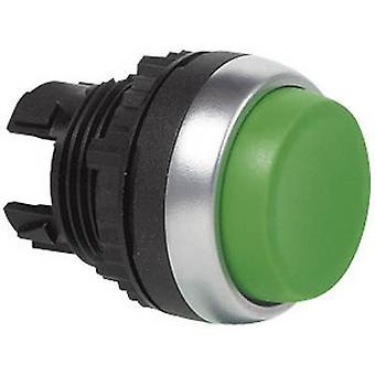 Verde de L21CA02 de BAL21CA02 BACO
