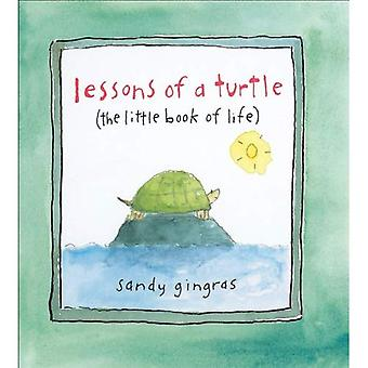 Lessons of a Turtle: The Little Book of Life