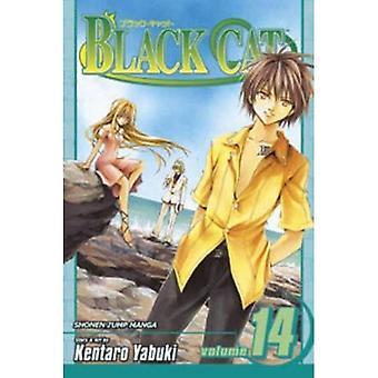 Black Cat, Vol. 14