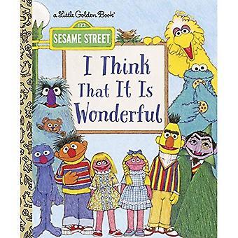 I Think That It Is Wonderful: Sesame Street (Little Golden Book)