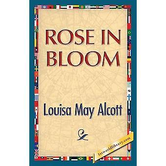 Rose in Bloom by Alcott & Louisa May