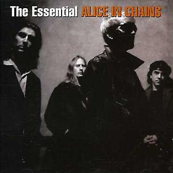 Alice in Chains - Essential Alice in Chains [CD] USA import