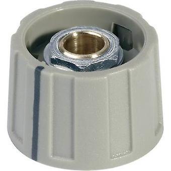 OKW A2623068 Control knob Grey 1 pc(s)