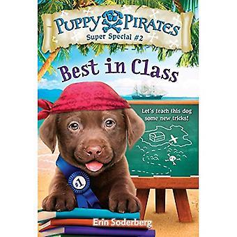 Filhote de cachorro piratas Super especial #2: Academia de pirata (um pisando pedra livro)