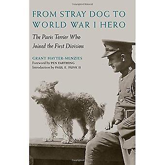 Vom Straßenhund zum ersten Weltkrieg Held: der Paris-Terrier, die erste Liga beigetreten,