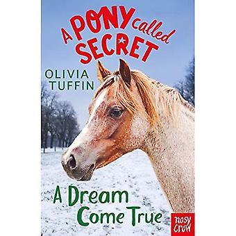 Un poney appelé Secret