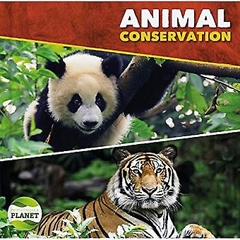 Animal Conservation (Protecting Our Planet)