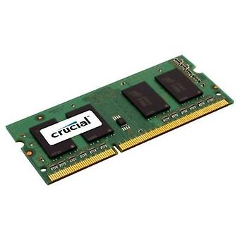 Critical RAM memory IMEMD30140 CT102464BF160B 8 GB 1600 MHz DDR3L-PC3-12800