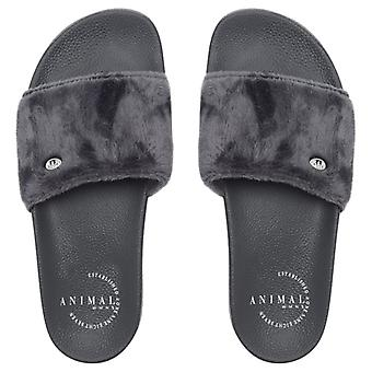 Animal Womens Slyd Slider Flip Flops | Magnet Grey