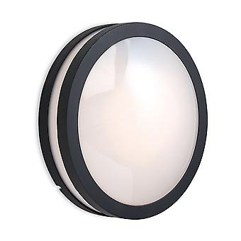 Firstlight-1 pared de luz/Flush techo colgante de luz de grafito, Opal difusor IP54-8354GP