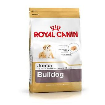 Royal Canin Bulldog Junior (hundar, hund mat, torka mat)