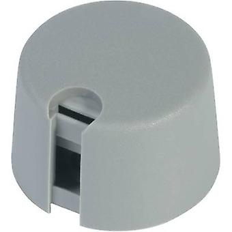 OKW A1040068 Control knob Grey (Ø x H) 40 mm x 16 mm 1 pc(s)