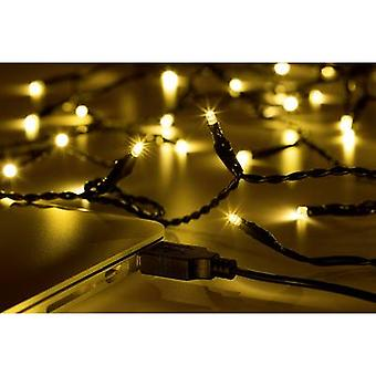 Polarlite LLC-06-002 Holiday lights (micro) Inside via USB 40 LED Warm white Illuminated length: 3.9 m