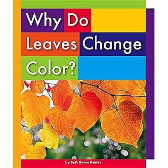 Why Do Leaves Change Color? (Everyday Earth Science)