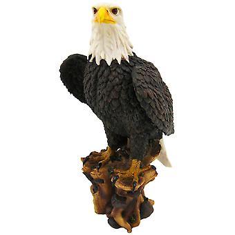 Amerikaanse trots Bald Eagle standbeeld natuur figuur