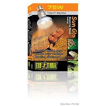 Exo Terra EXO TERRA SUN GLO LAMP DIRECT FOCUS 75W (Reptiles , Lighting , Light Bulbs)