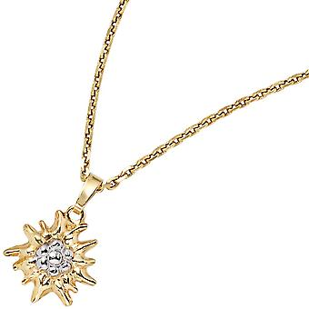 Edelweiss costumes pendants pendants Edelweiß yellow gold part rhodium plated