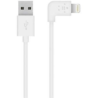 Belkin iPad/iPhone/iPod Data cable/Charger lead [1x USB 2.0 connector A - 1x Apple Dock lightning plug] 1.2 m White