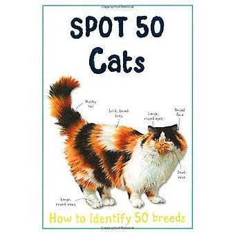 Spot 50 Cats (Large Spot 50 Series)