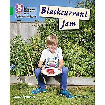 Collins Big Cat Phonics for Letters and Sounds - Blackcurrant Jam: Band 5/Green (Collins Big Cat Phonics for Letters and Sounds)