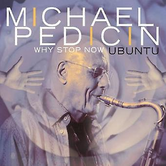 Michael Pedicin - Warum Stop Now [CD] USA import
