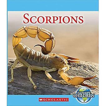 Skorpioner (naturens barn)