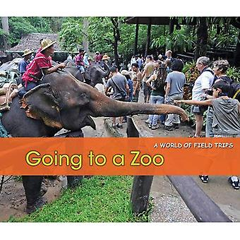 Going to a Zoo by Rissman, Rebecca ( AUTHOR ) Feb-03-2012 Hardback
