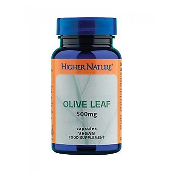 Higher Nature Olive Leaf 500mg Vegetarian Capsules 90
