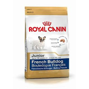 Royal Canin French Bulldog Junior (Chiens , Nourriture , Croquettes)