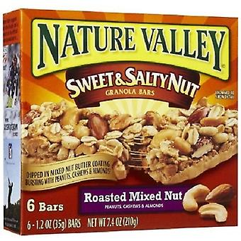 Nature Valley Sweet & Salty Nut Roasted Mixed Nut