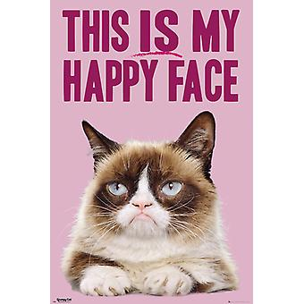 Grumpy Cat Happy Face Poster Poster Print