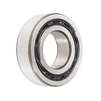 Nsk 4203Btnc3 Double Row Deep Groove Ball Bearing