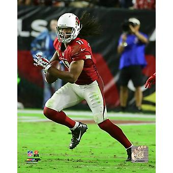 Larry Fitzgerald 2016 Action Photo Print (8 x 10)