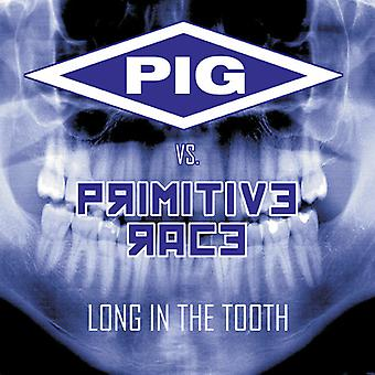 Pig vs. Primitive Race - Long in the Tooth [CD] USA import