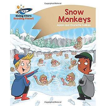 Lezing planeet - sneeuw Monkeys - goud: Komeet Street Kids (Rising Stars planeet lezen)