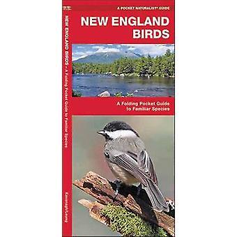 New England fåglar - en Folding Pocket Guide till bekanta arter av Jame