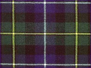 MacNeill of Barra Hunting, Modern - Pure Wool Tartan