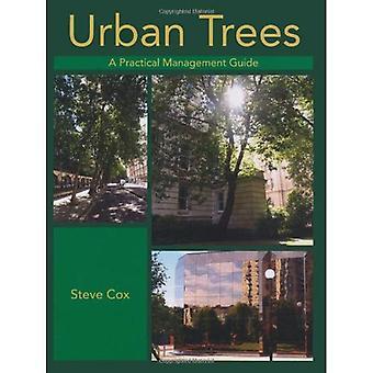 Árvores urbanas
